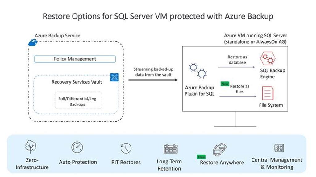 Restore options for SQL server